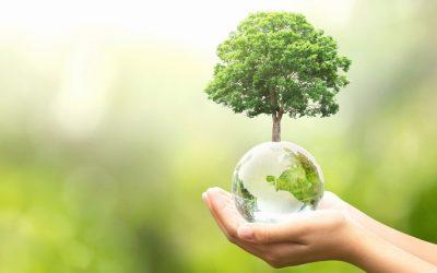 Konkurs ekologiczny z okazji Dnia Ziemi